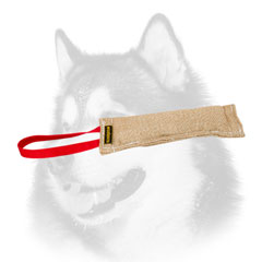Siberian Husky bite tug jute for puppy training