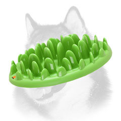 Interactive green lawn Siberian Husky dog feeder