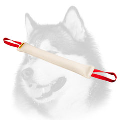 Fire hose Siberian Husky bite tug with handles