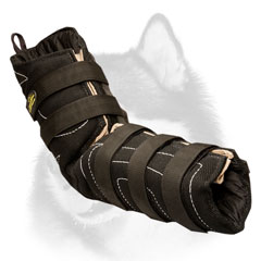 Safe Siberian     Husky professional sleeve for training