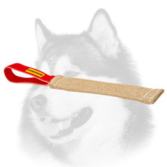 Siberian Husky puppy     professional training tug with one handle