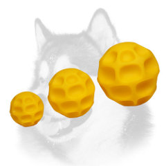 Possible sizes of tetraflex dog toys for Siberian Husky