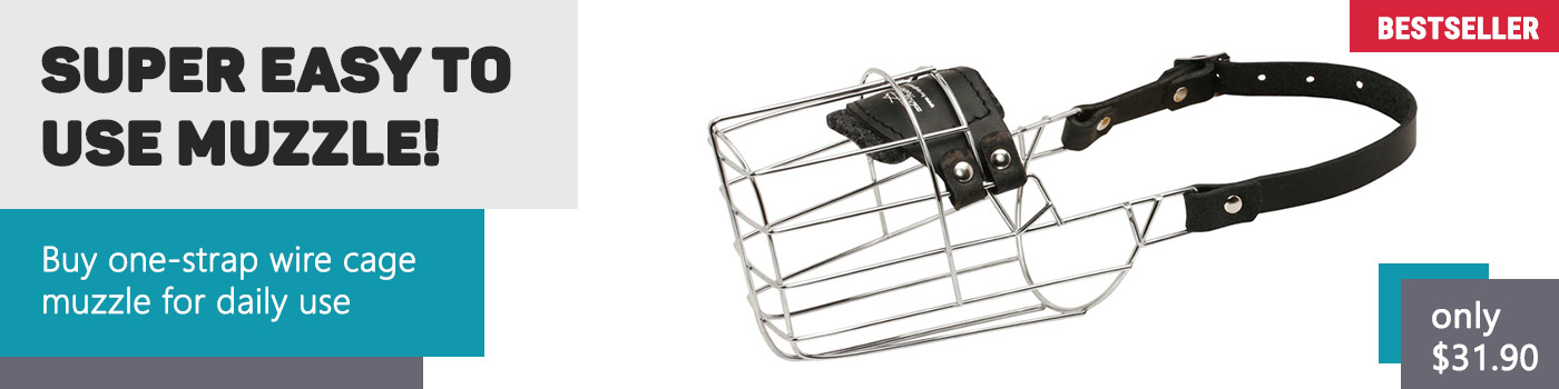 Perfect Ventilation Cage Style Metal Muzzle for Siberian Husky
